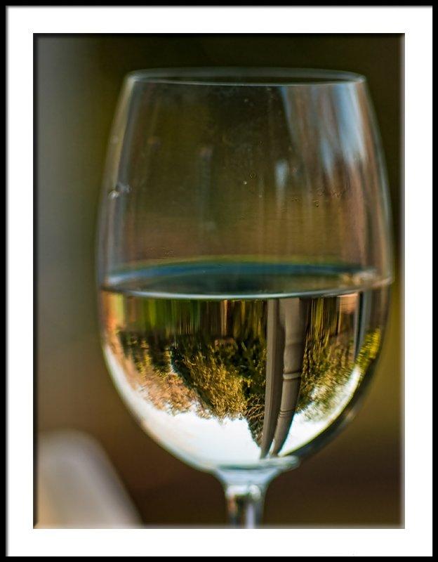 Wine Dreams