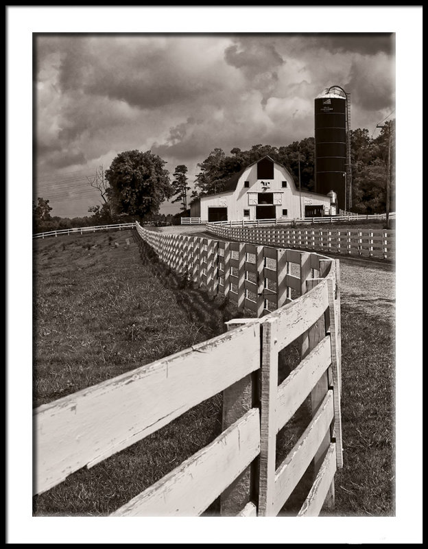 Dairy Farm on a Hill