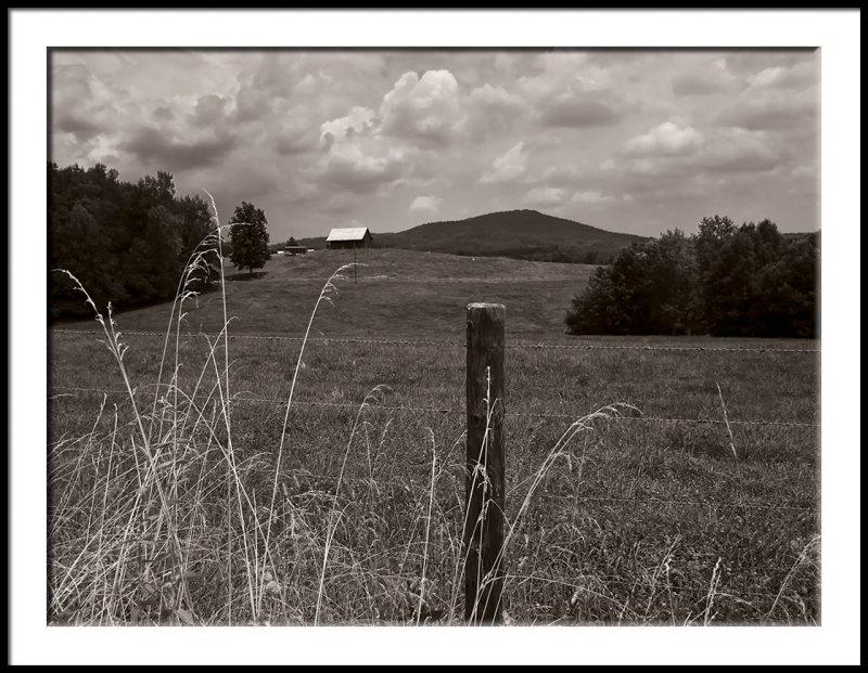 Brushy Mt. Hillside Farm