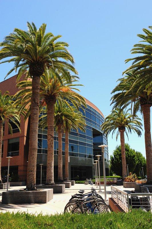 11_Google Campus.jpg