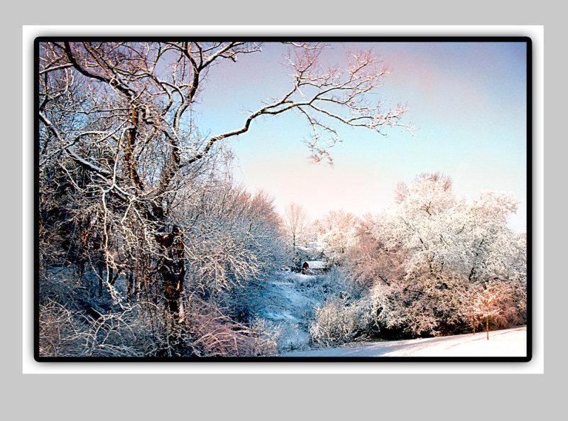 snowydays XX.jpg