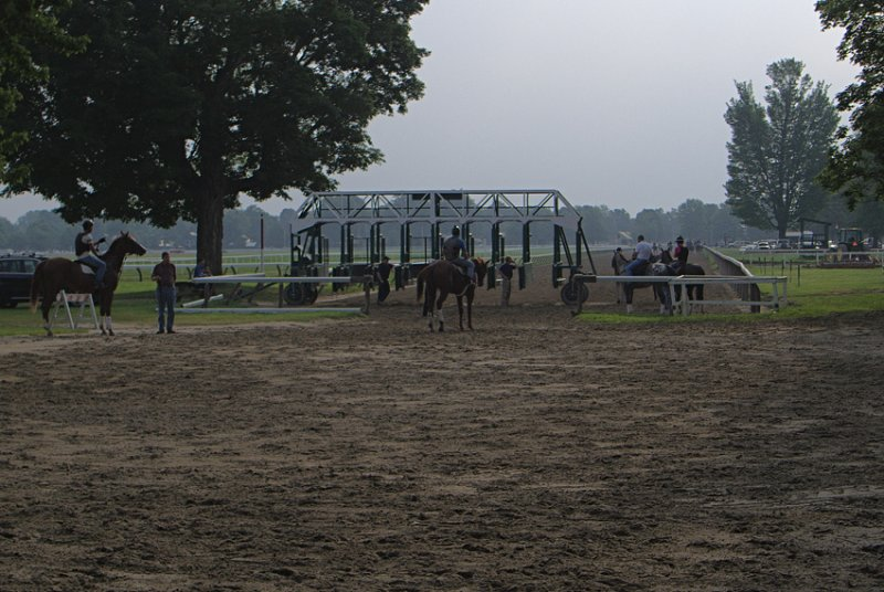 Morning at Saratoga Races