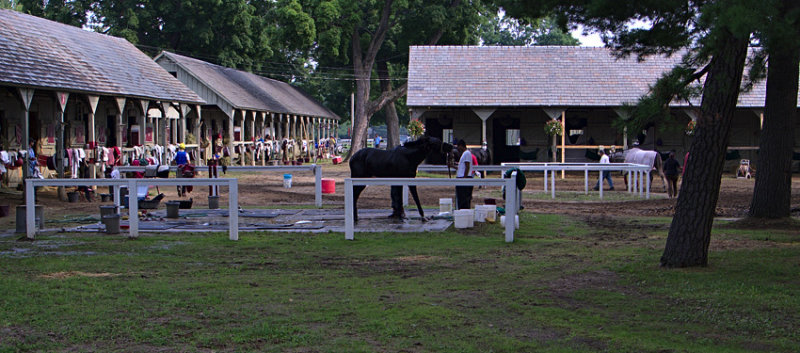 Morning at Saratoga Races #2