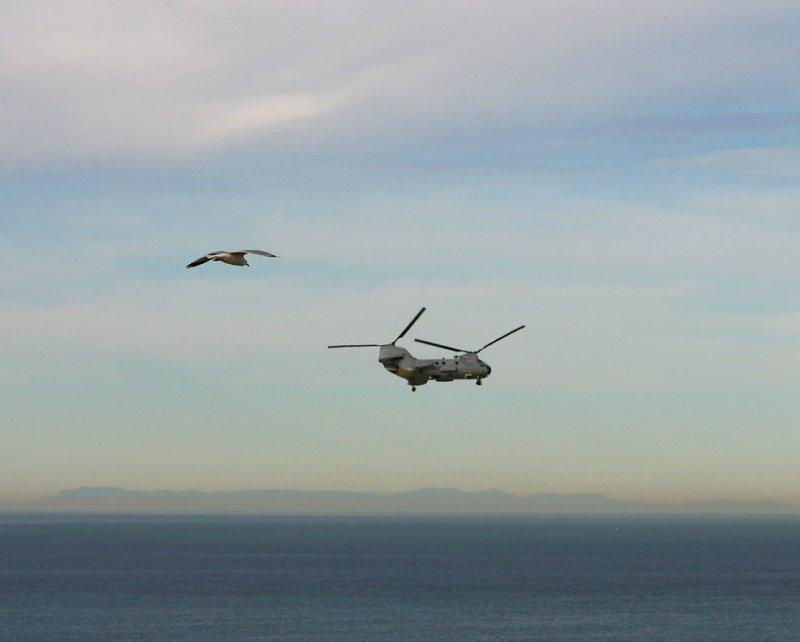 CH-46 Sea Knight with a GU-11 escort