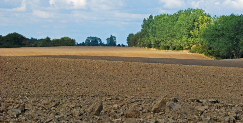 Freshly ploughed fields