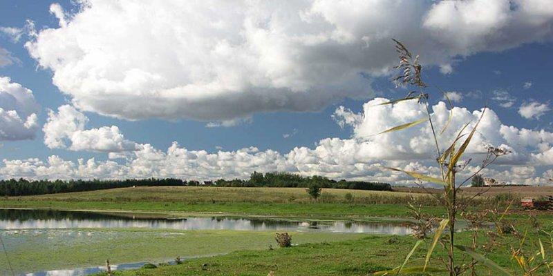 September landscape 1