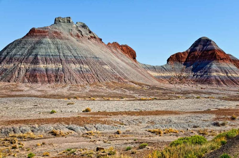 Petrified Forrest National Park