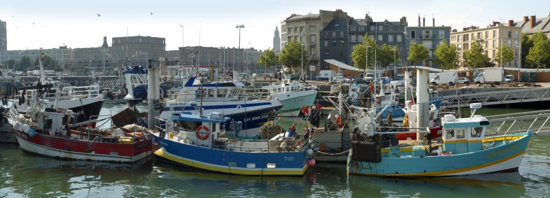 Panorama Port de pêche