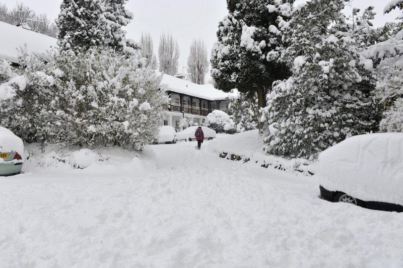 Snow 0209_ 42.jpg
