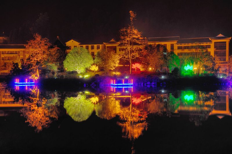 The Pond At Night (1)