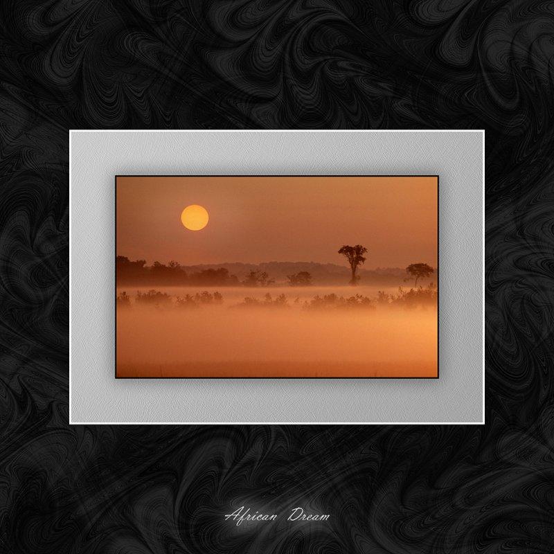 African Dream.jpg