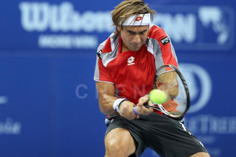 Quarter finals: David Ferrer (Spain)