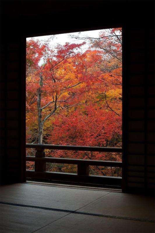 Hokyo-in Temple