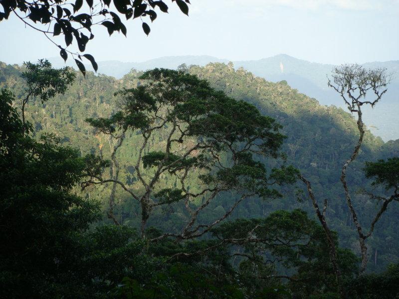 Mirador View from Cerro Pirre