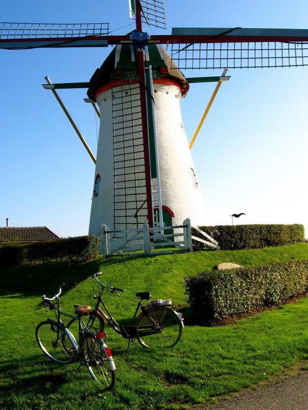 Biking in Zeeland