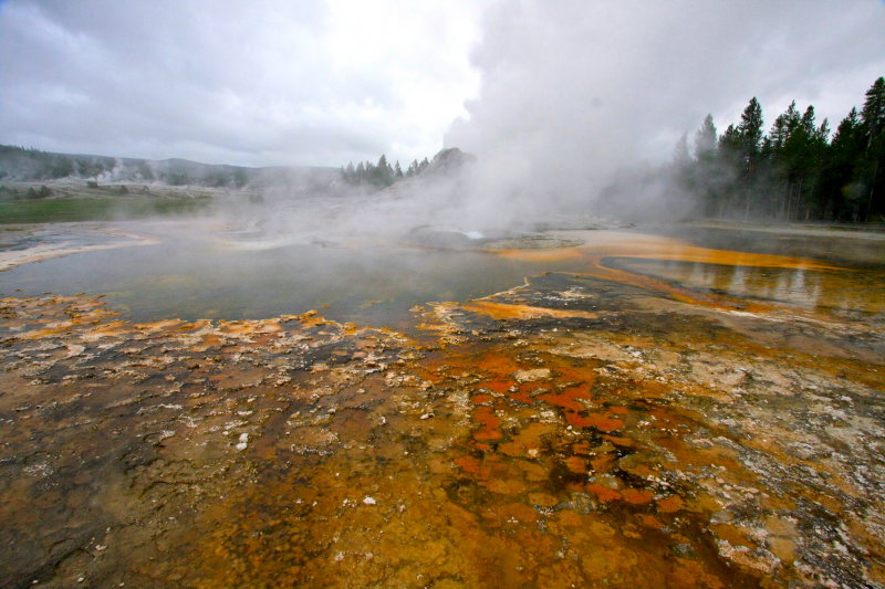 Tortoise Shell Spring - Upper Basin Area - Yellowstone