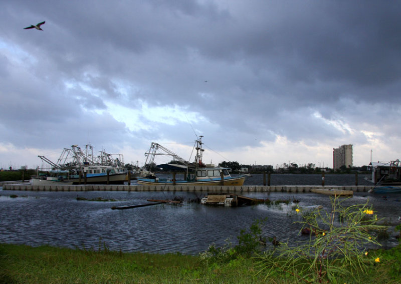 Hopefully Shrimp Boats are Safe from the Outer Bands of Hurricane Ike