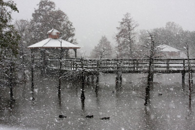 The Snowstorm of December 2008