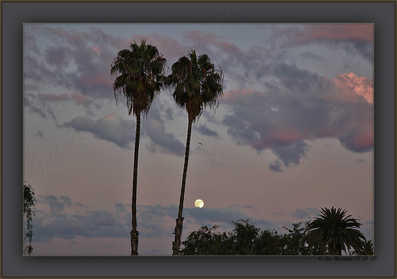 Sunset Moon-Rise At Back Of The Twins
