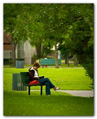 Reader On A Park Bench