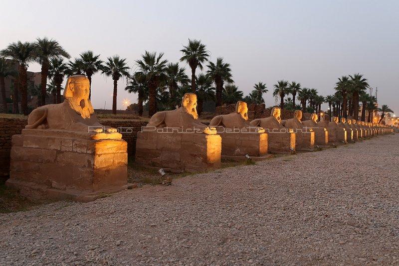 3321 Vacances en Egypte - MK3_2249_DxO WEB2.jpg