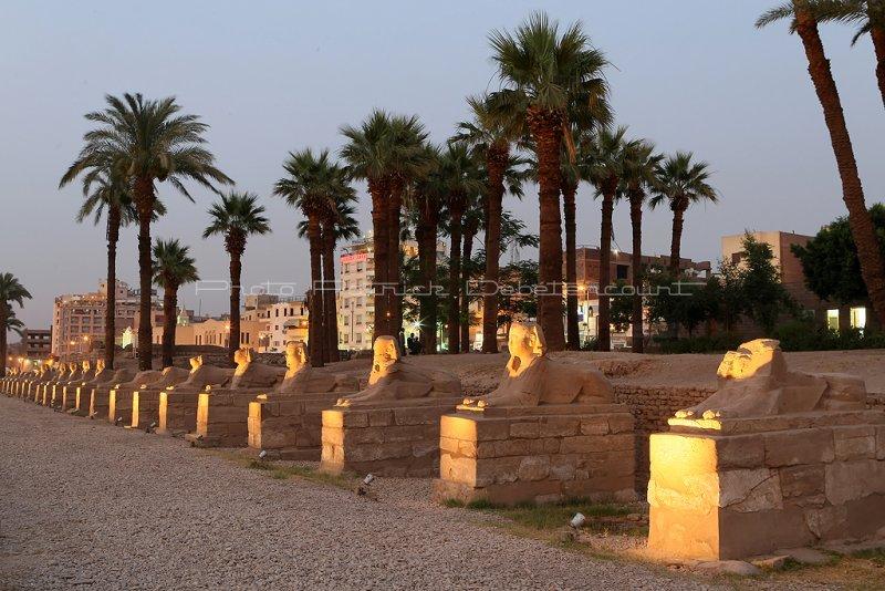 3322 Vacances en Egypte - MK3_2250_DxO WEB2.jpg