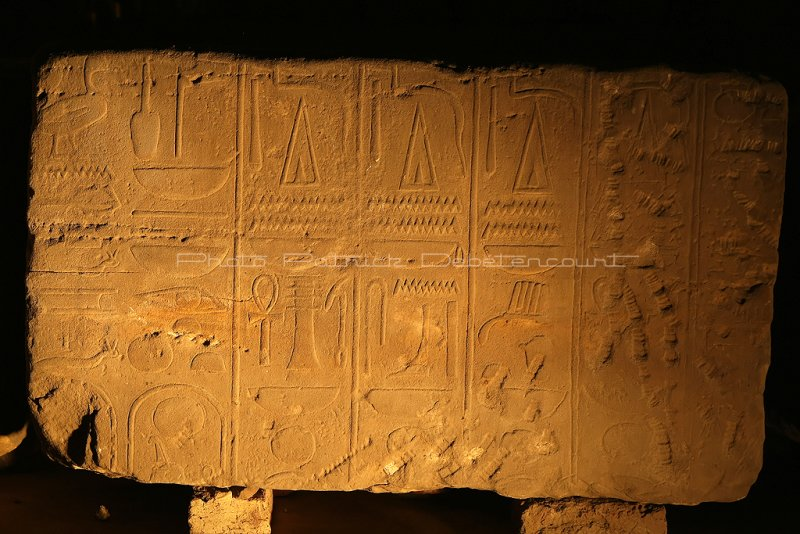 3391 Vacances en Egypte - MK3_2319_DxO WEB2.jpg