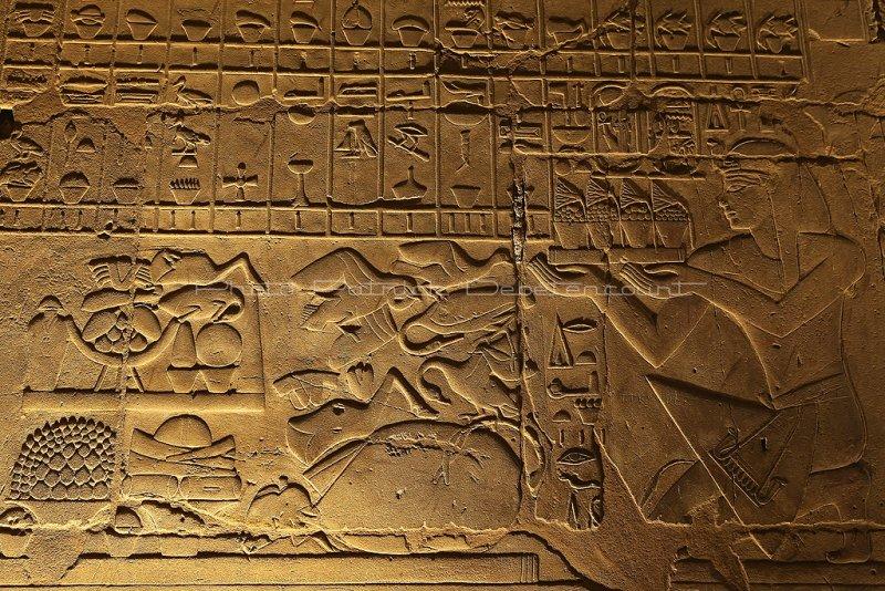 3396 Vacances en Egypte - MK3_2324_DxO WEB2.jpg