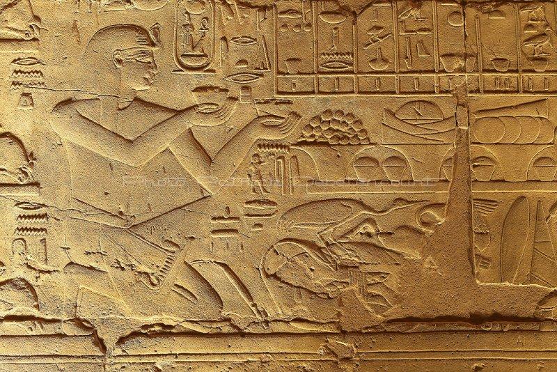 3397 Vacances en Egypte - MK3_2325_DxO WEB2.jpg
