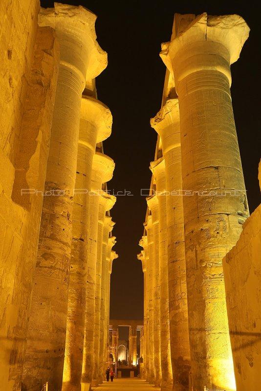 3405 Vacances en Egypte - MK3_2333_DxO WEB2.jpg