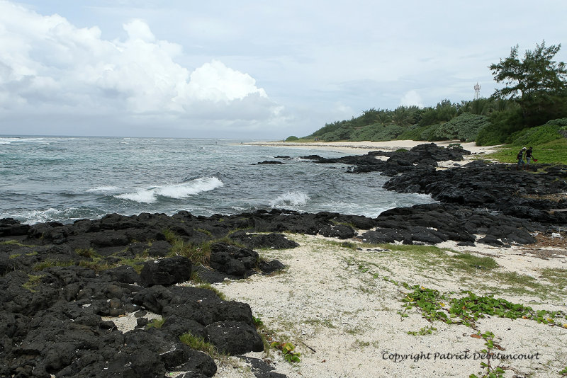 2 weeks on Mauritius island in march 2010 - 2080MK3_1296_DxO WEB.jpg