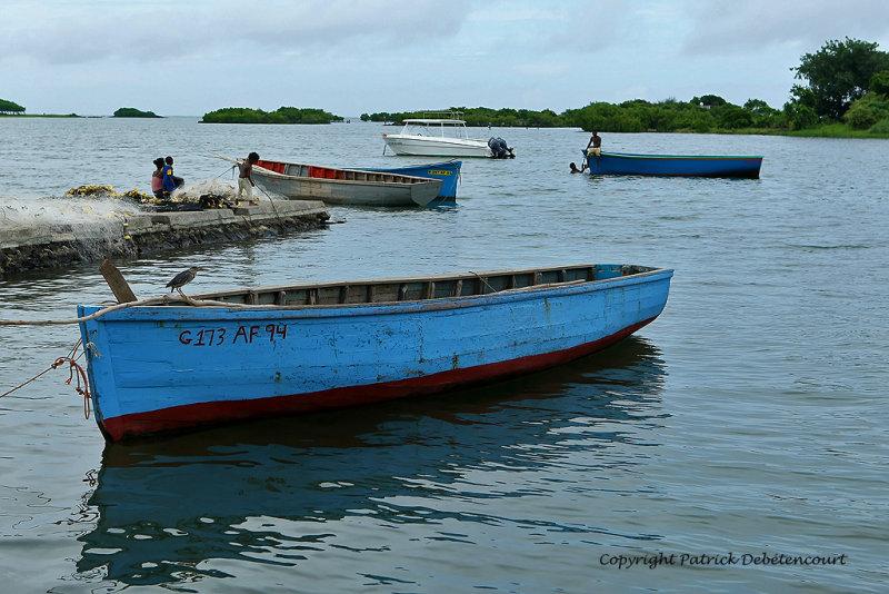 2 weeks on Mauritius island in march 2010 - 2106MK3_1325_DxO WEB.jpg