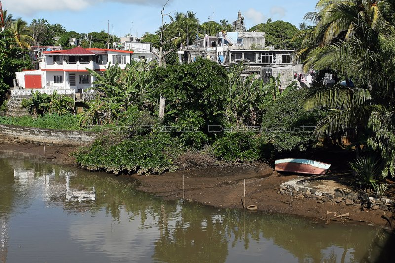 2 weeks on Mauritius island in march 2010 - 2772MK3_1778_DxO WEB.jpg