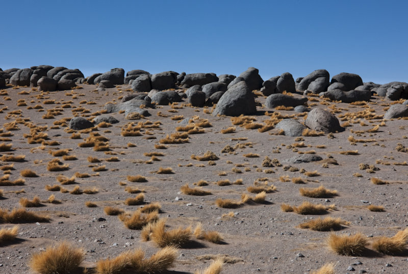 W-2009-08-19 -2412- Atacama - Alain Trinckvel.jpg