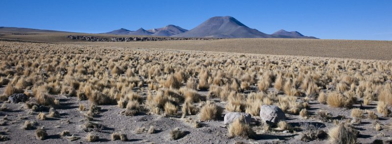 W-2009-08-19 -2032- Atacama - Alain Trinckvel.jpg