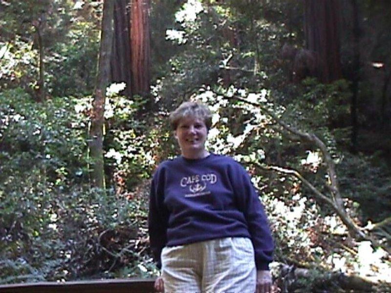 Bernice-Muir Woods Natl Monument-Sausalito, CA