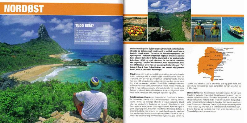 Guia Brasil NTS - Nettravel Service - Dinamarca página interna