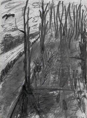 A Landscape Near Horsten - 2006