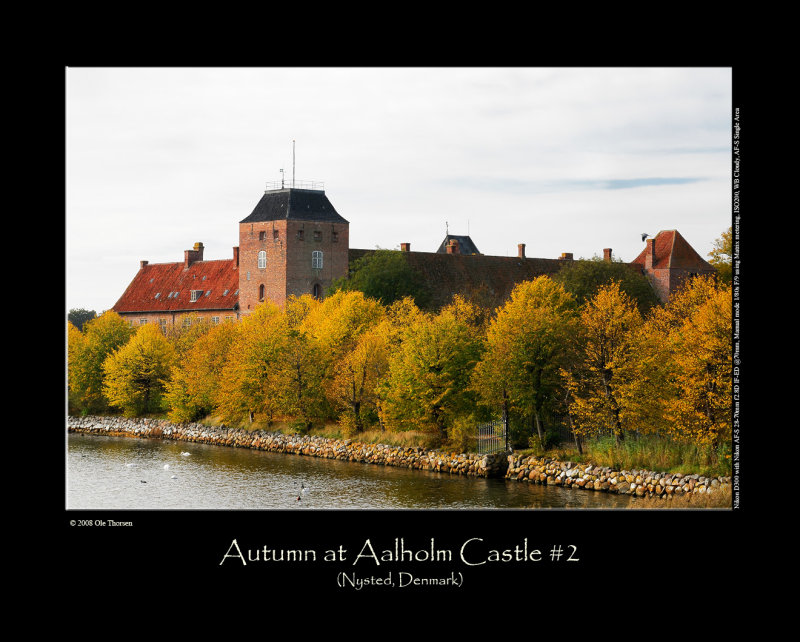 Autumn at Aalholm Castle #2