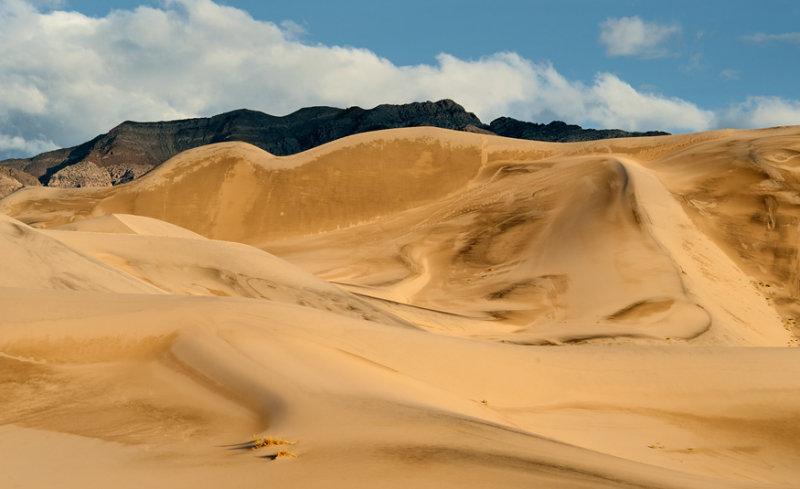 Eureka Dunes 2010