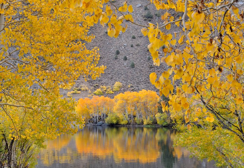 Intake Pond