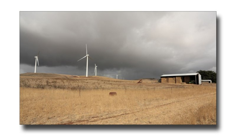 Wind farm on the farm.jpg