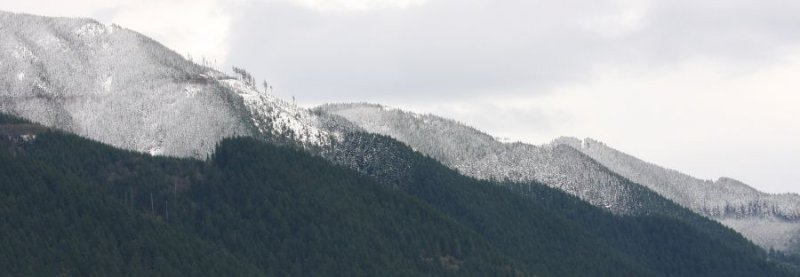 Snow in the Foothills