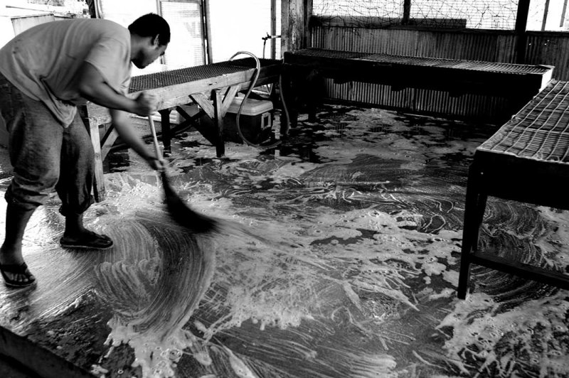 Cleaning the floor at a local fish and fruit market. 25mm Biogon L1006800.jpg