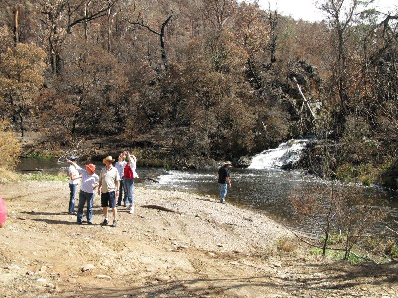 Harrisons Cut, Dargo River