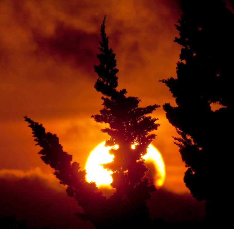 Evergreen sunset _MG_7970.jpg