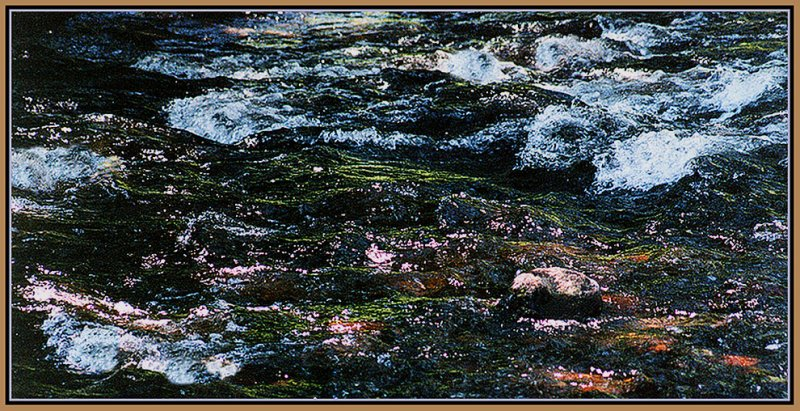03-Abstract-in-a-River-2.jpg