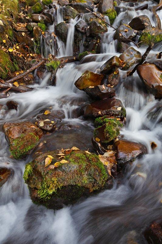 Rainbow Creek 4899 (10-2-09 TS Lens)