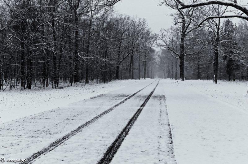One Set of Tracks