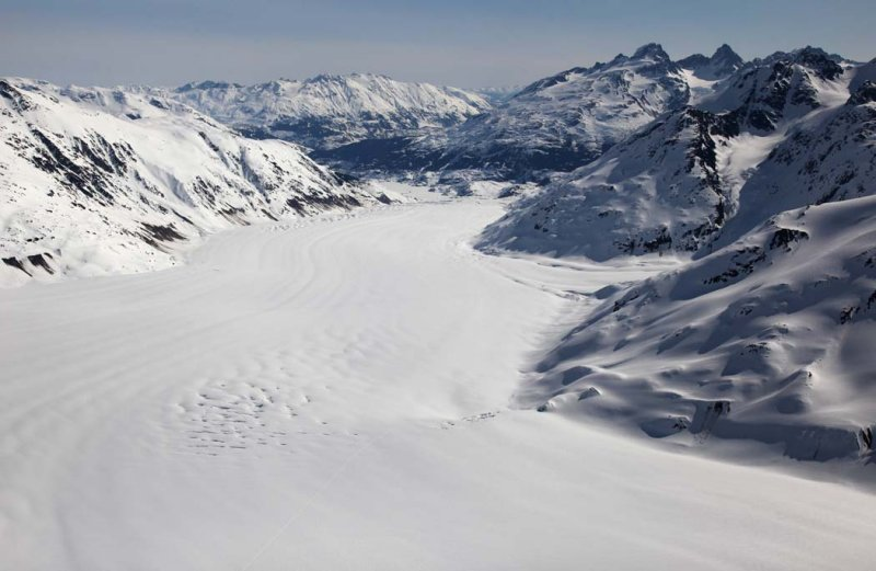 Frank Mackie Glacier & Mt Jancowski, View NE  <br> (CassiarCambria043009-_062.jpg)